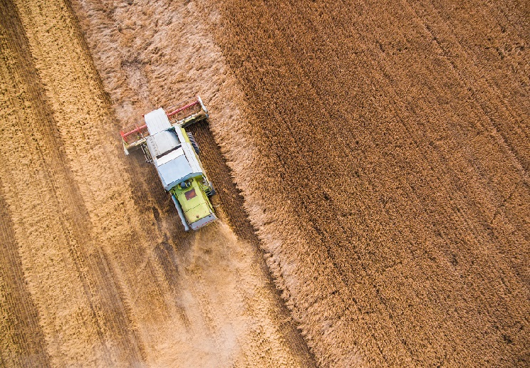 Big Picture Strategy for Farm Transition Plan